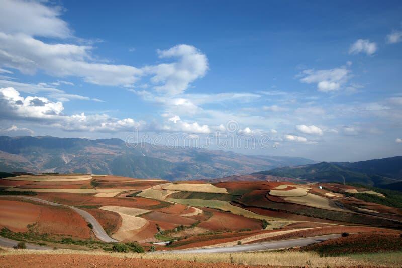 сельскохозяйственне угодье фарфора цветастое dongchuan стоковые изображения rf