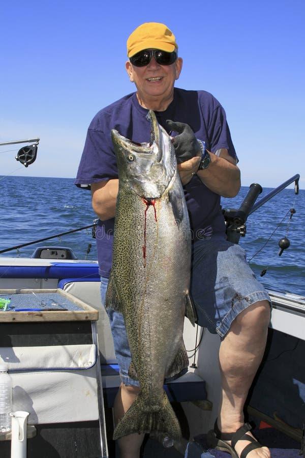 семги ontario человека озера короля рыб большие стоковое фото rf