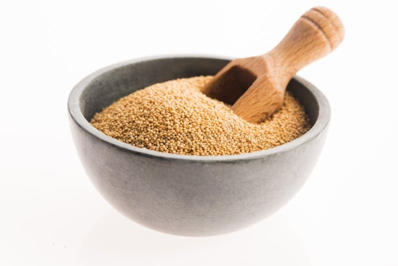 Семена амаранта стоковое изображение