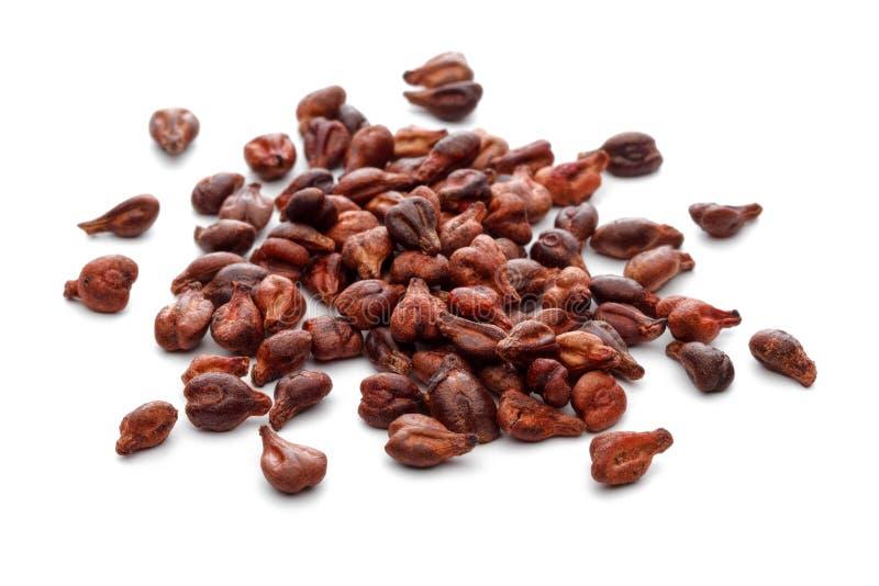 семена виноградины на белой предпосылке стоковая фотография rf