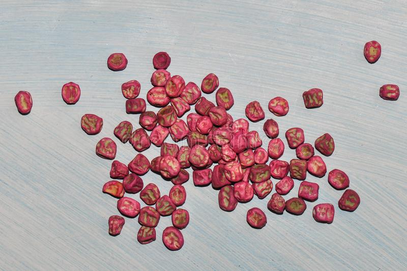 Семена зеленых горохов стоковое изображение rf