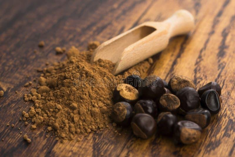 Семена и порошок Guarana стоковая фотография rf