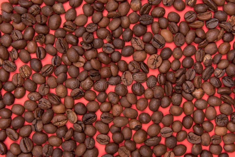 семена кофе на покрашенной предпосылке стоковые изображения rf