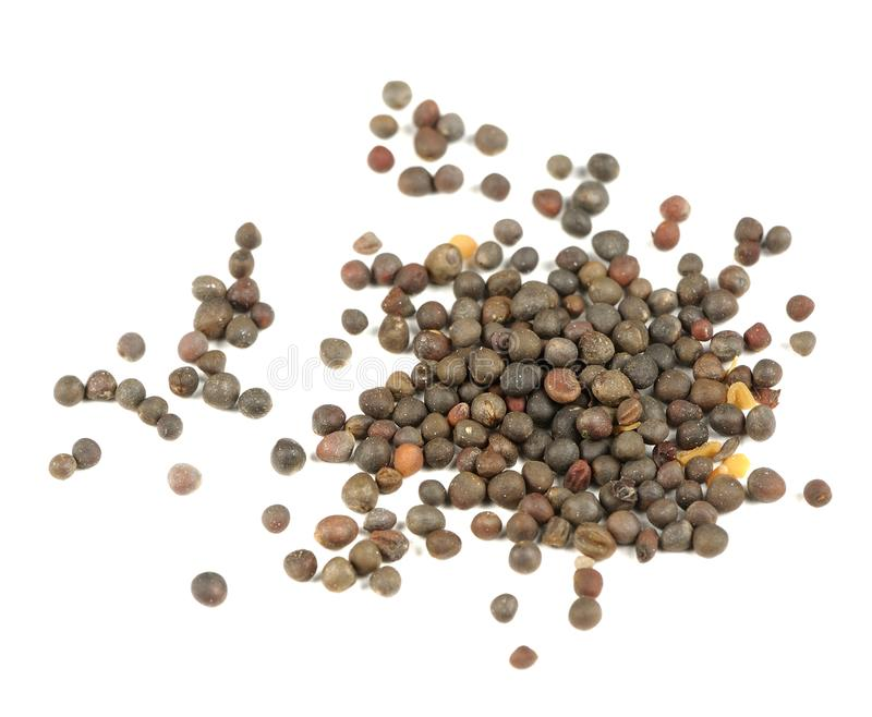 Семена кольраби (немецкого турнепса) изолированные на белой предпосылке стоковое фото