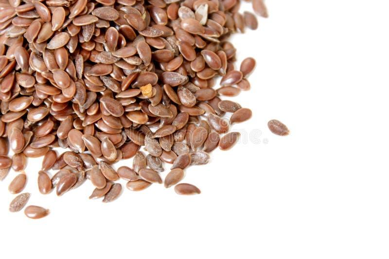 семена льна стоковые фото