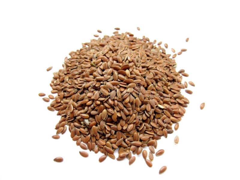 семена льна стоковая фотография rf