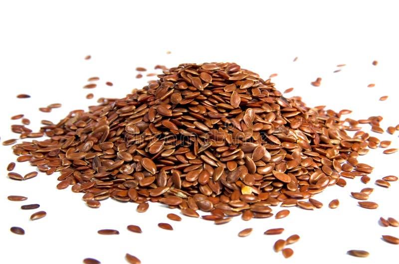 семена льна стоковая фотография