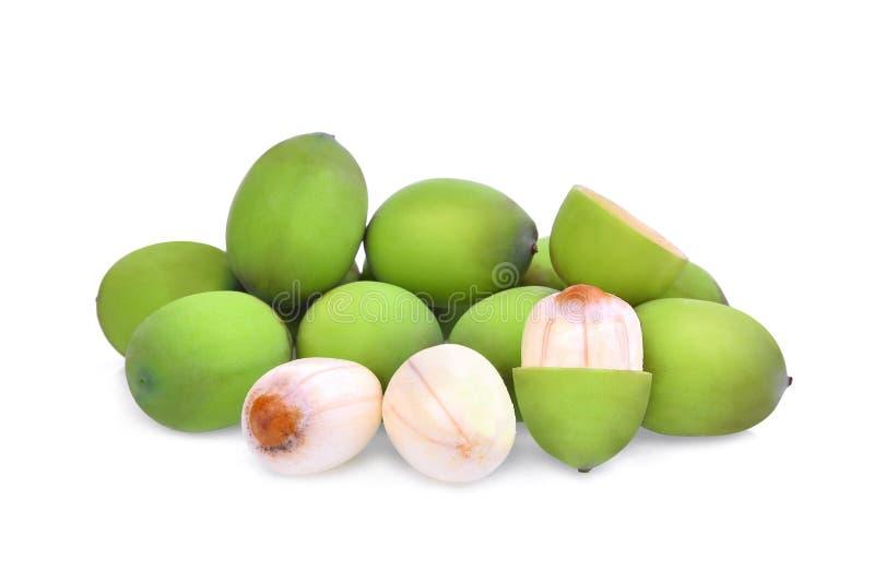Семена лотоса на белизне стоковая фотография rf