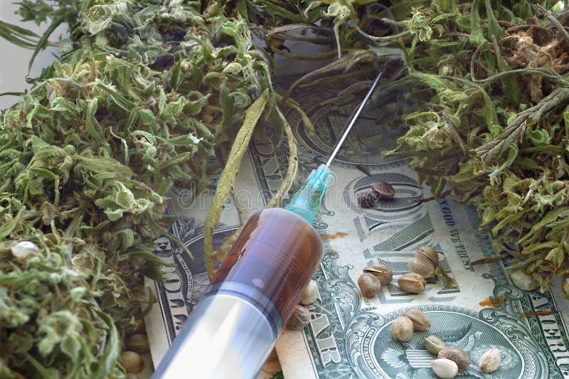 Конопли как сушить семена москве в достать марихуану