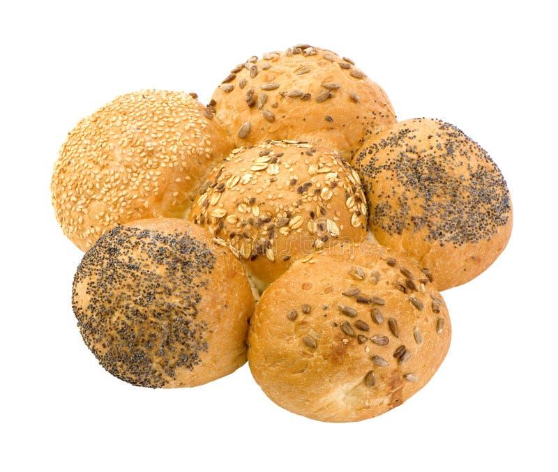 семена плюшки стоковая фотография