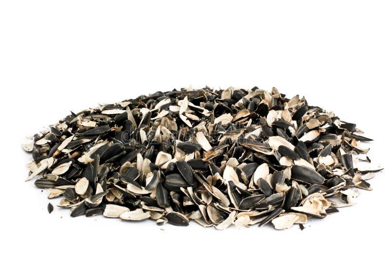 Семена подсолнуха шелухи Предпосылка еды стоковые изображения rf