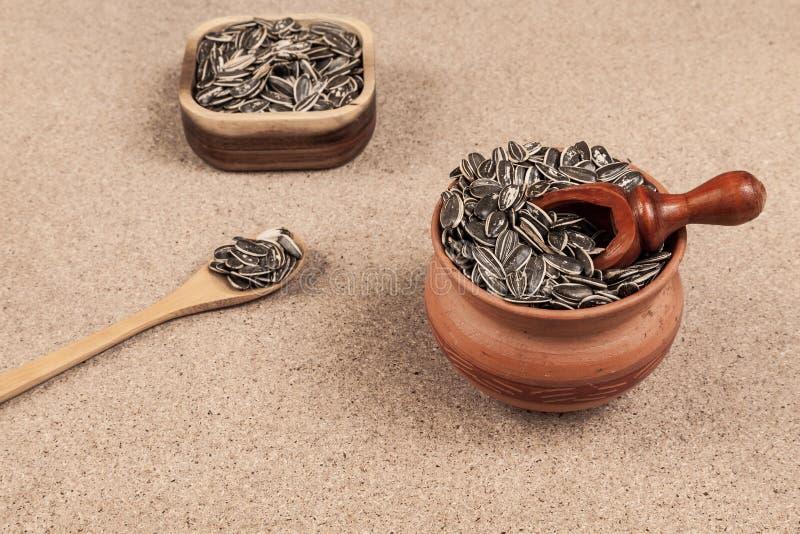 Семена подсолнуха - annuus подсолнечника стоковое фото rf