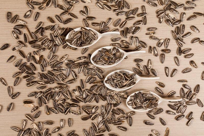 Семена подсолнуха - annuus подсолнечника стоковые изображения rf