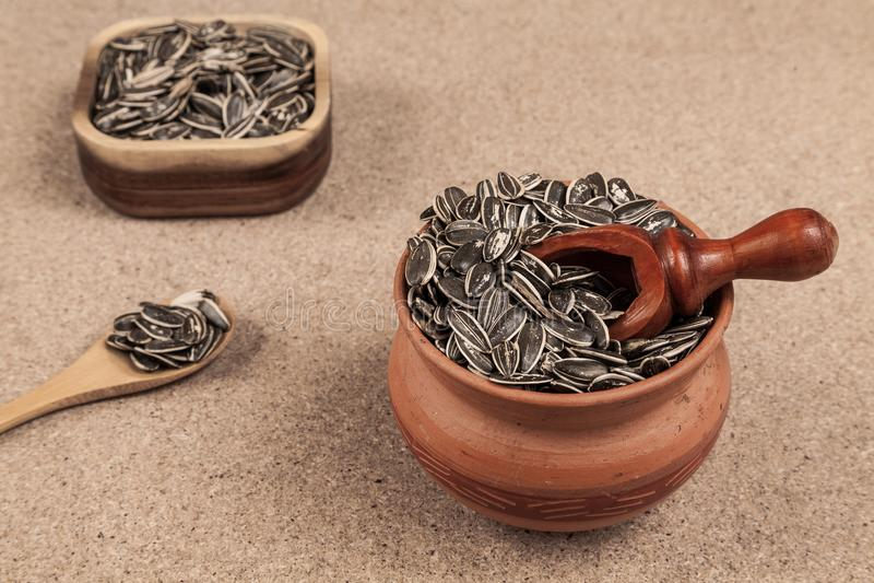 Семена подсолнуха - annuus подсолнечника стоковое изображение rf