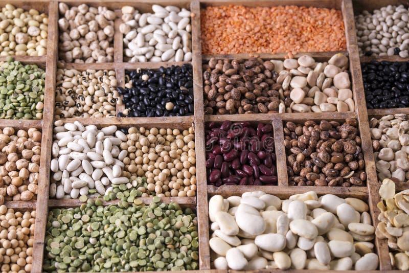Семена смешанных бобов стоковое фото