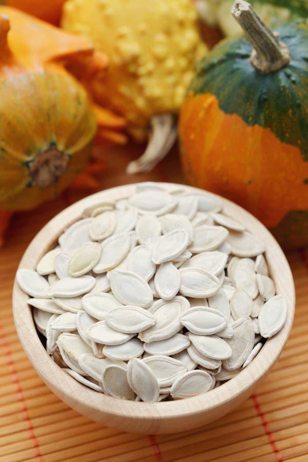 Семена тыквы стоковое изображение