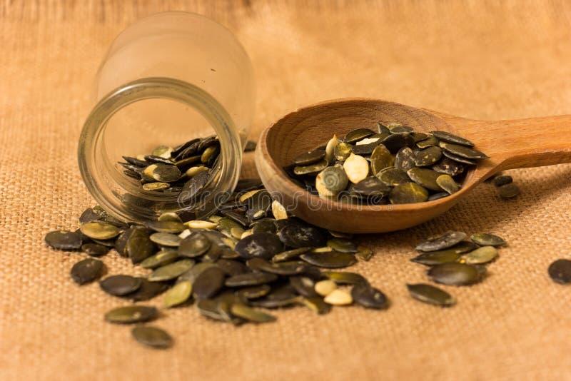 Семена тыквы стоковые изображения