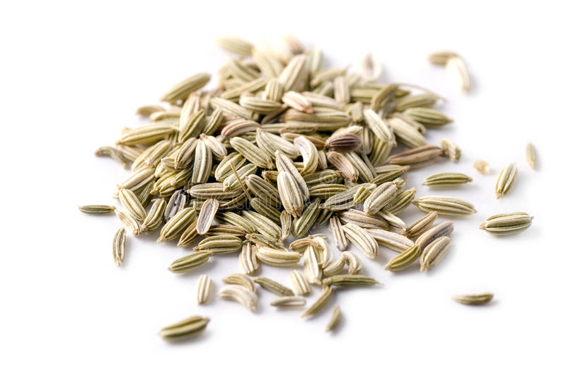 семена фенхеля стоковые фото