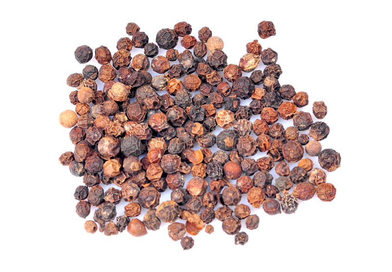 семена черного перца стоковое фото
