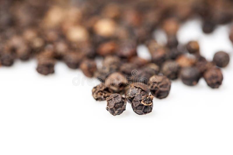 Семена черного перца стоковые фотографии rf