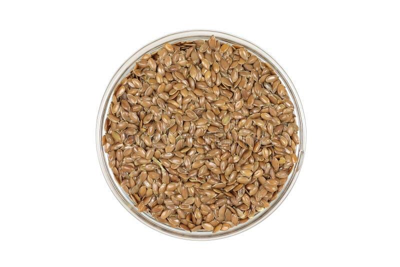 Семена льна Брайна в стеклянном блюде стоковое фото