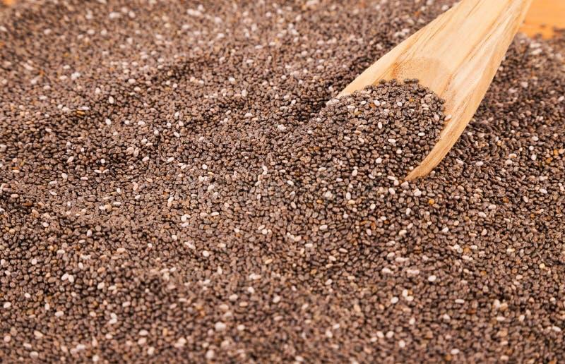 Семена Chia с деревянной ложкой стоковая фотография