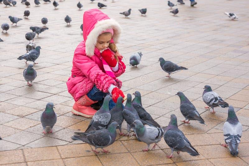 Семилетняя девушка в голубях wiinter подавая в улице стоковое изображение