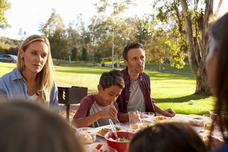 2 семьи имея пикник в парке, над взглядом плеча стоковые фото
