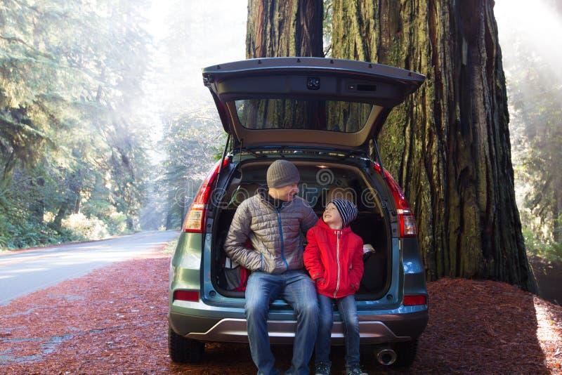 Семья в лесе redwood стоковые фото