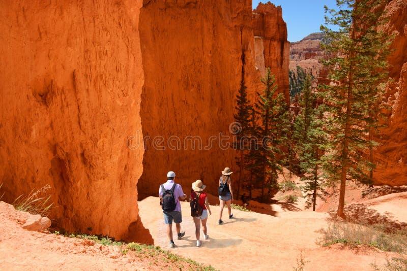 Семья в красных горах на летних каникулах стоковая фотография rf