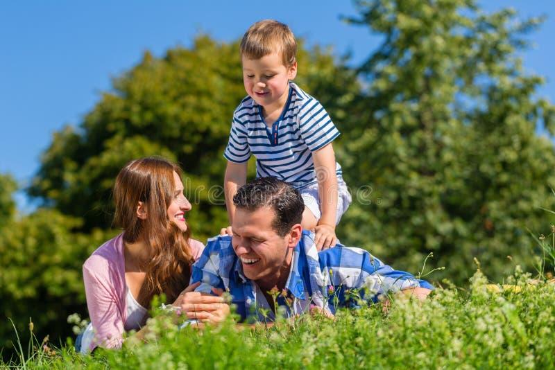 Семья лежа в траве на луге, катании сына на папе стоковое изображение