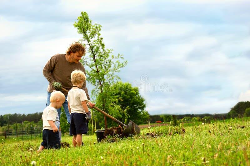 Семья засаживая дерево