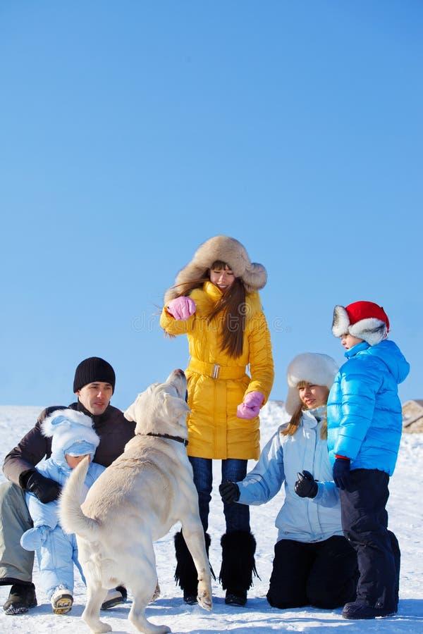 Семья играя с собакой стоковая фотография rf