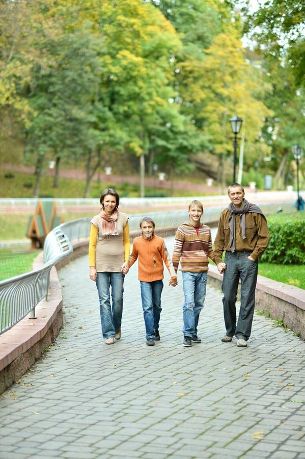 Семья из четырех человек ослабляя в парке осени стоковое изображение rf