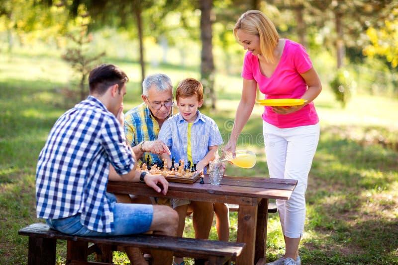 Семья имеет перерыв в шахматах игры природы, стоковые изображения