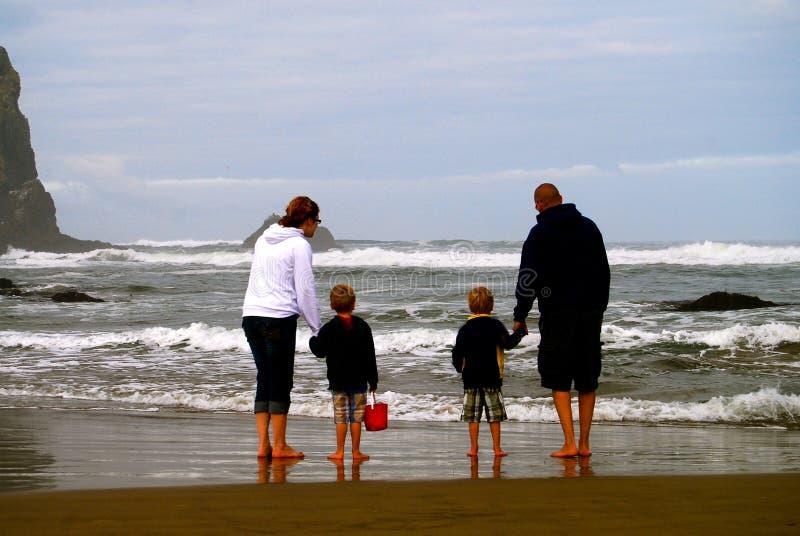 Семья исследует бассейн прилива малой воды на пляже стоковые изображения rf