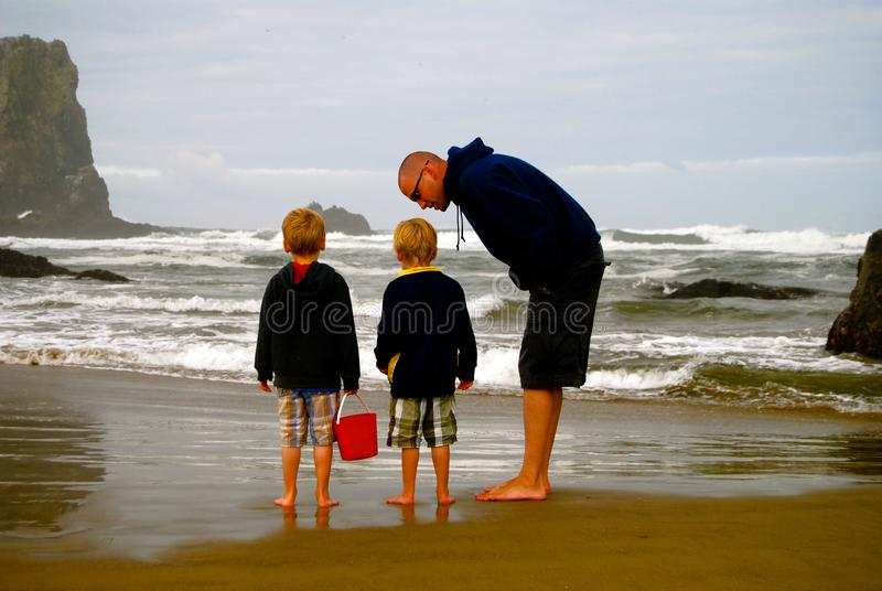 Семья исследует бассейн прилива малой воды на пляже стоковая фотография rf