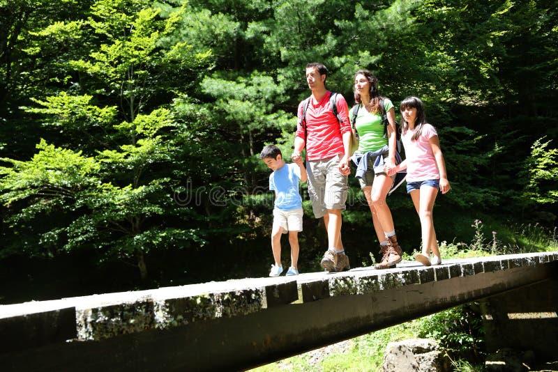 Семья идя на мост в лесе стоковые фотографии rf