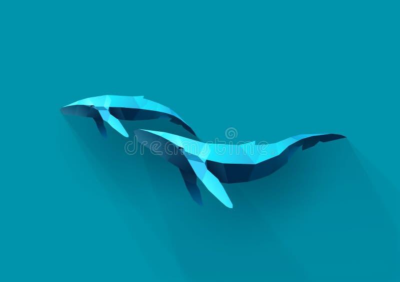 Семья кита бесплатная иллюстрация