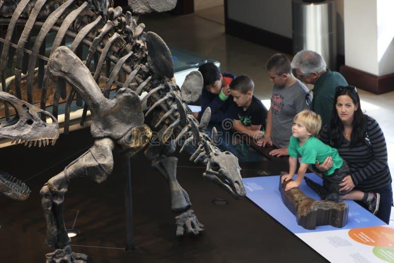 Семья наслаждаясь музеем экспоната динозавра стоковая фотография rf