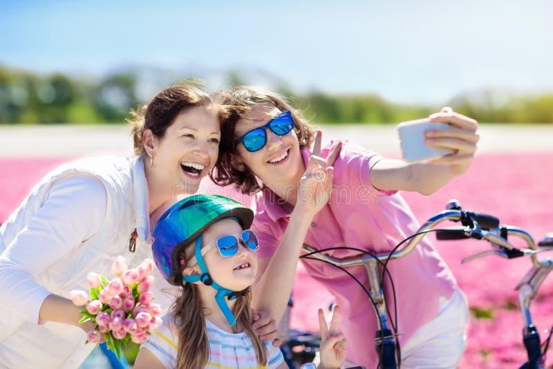 Семья на велосипеде в полях цветка тюльпана, Голландии стоковые фото