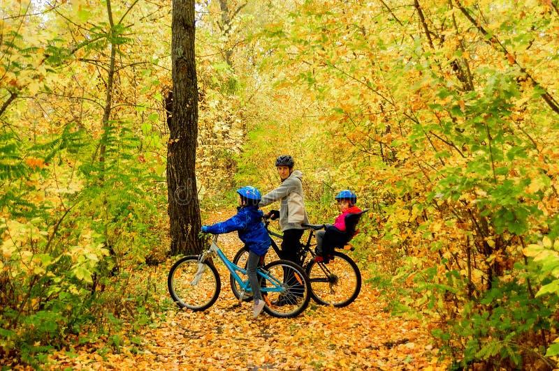 Семья на велосипедах в парке осени, задействовать отца и детей стоковое фото rf