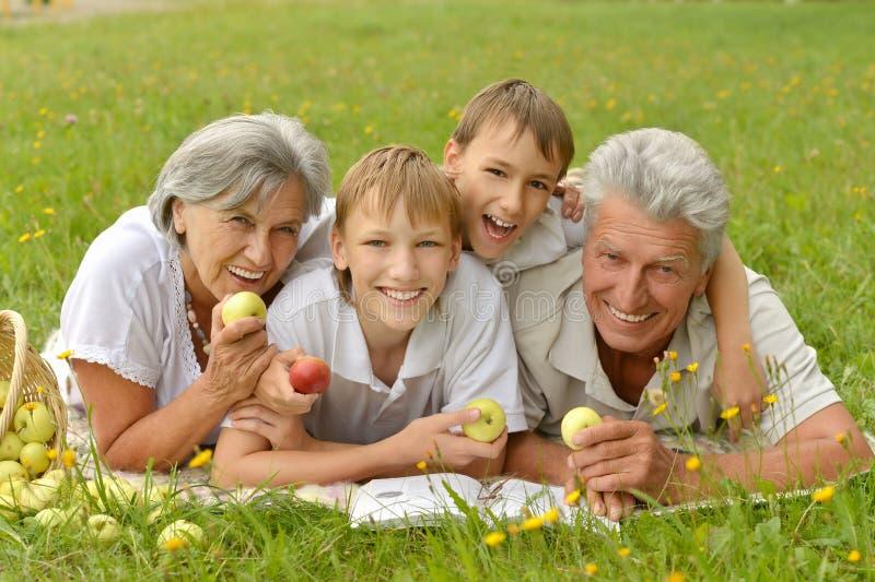 Семья на траве лета с яблоками стоковое изображение