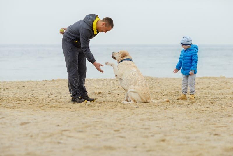 Семья с собакой на пляже стоковое изображение rf