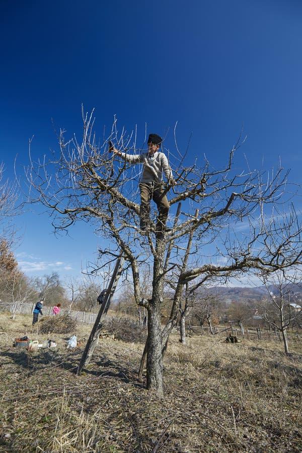 Семья фермеров делая работу весеннего времени стоковое изображение rf