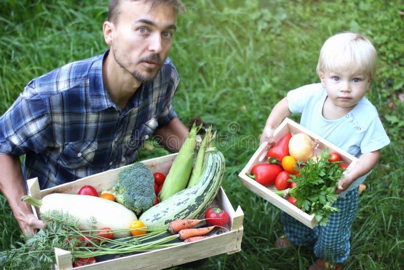 Семья фермеров Отец держит большую коробку овощей, и его к стоковое фото rf
