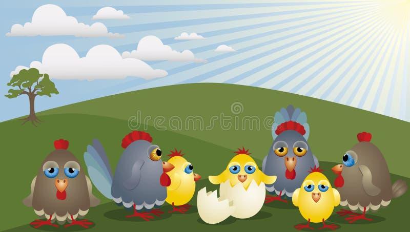 семья цыпленка бесплатная иллюстрация