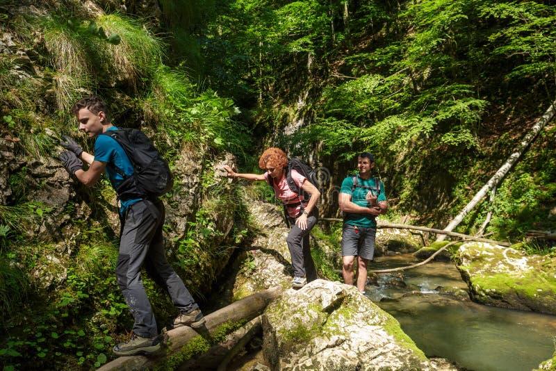 Семья hikers в каньоне стоковые изображения