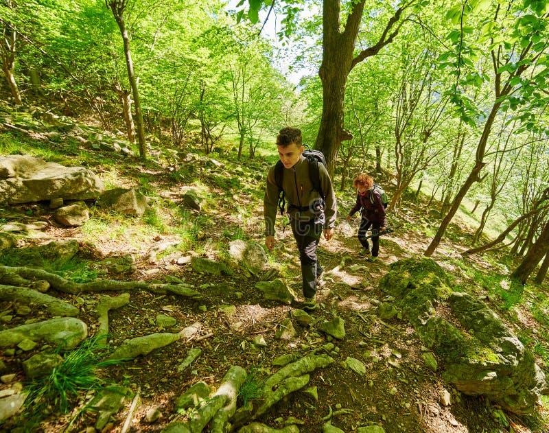 Семья hikers идя на горную тропу стоковые изображения