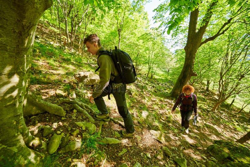 Семья hikers идя на горную тропу стоковое фото rf